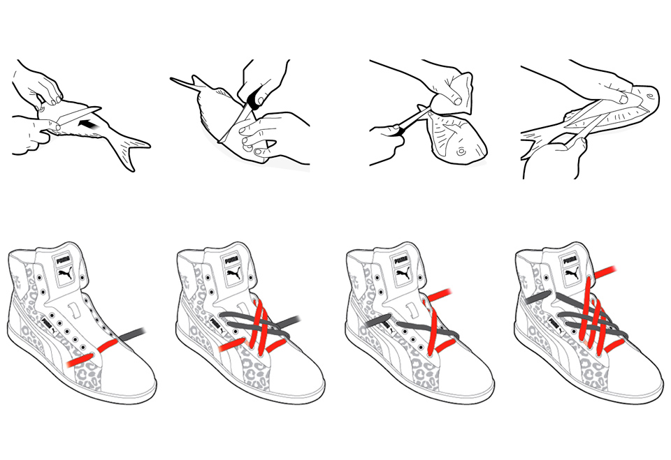 Instructions how to fillet a fish and how to tie your shoe laces