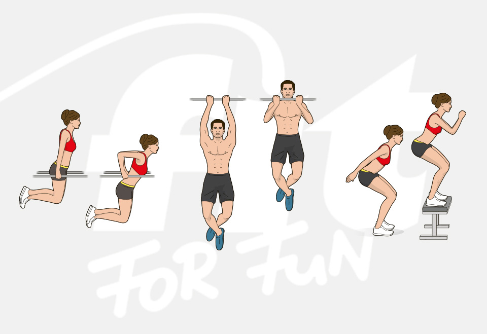 Exercise illustrations